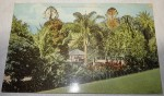 Old Australian Postcard Botanical gardens Brisbane. Click for more information...